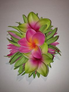 PLUMERIA NANI is the perfect name for this Hairloom.Nani, in the Hawaiian language means beautiful, pretty! They are the flowers you would expect for a welcoming lei when you come to our Hawaiian shores!I always gather plenty of my favorite flowers to make