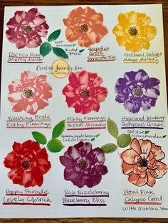 Stampin Up!, To a Wild Rose, Color Combinations, www.creativejuicebyloni.com