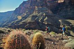 Hiking the Grand Canyon's Deer Creek—Thunder River Loop - REI Blog