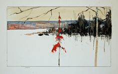 red spruce 3 (study) by David Lidbetter