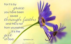 Ephesians 2:8 ~ For it is by grace you have been saved through faith; and this is not from yourselves, it is the gift of God.