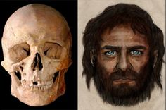 Genetic analysis reveals blue eyes evolved before light skin. | I Fucking Love Science