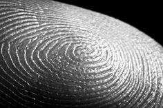 #fingerprint