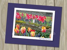 Skagit Valley Tulip Festival  - blank note card by Awfully Nice Designs.