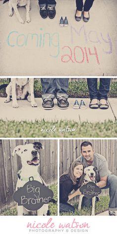 pregnancy announcement, austin texas, maternity, dog