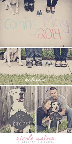 pregnancy announcement, austin texas, maternity, dog