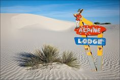 Whimsical old neon hotel - lodge sign buried in the middle of a sand dune at White Sands National Monument, New Mexico. Large canvas photography to 16x24 20x30 24x36 and 32x48. Image title: No Skiing at the Lodge This image is from my photography series of objects from the past. This image is a composite of two photographs working together to form a more interesting final image. All photographs are original and photographed by artist Bob Estrin. Photographs are available in a variety of...