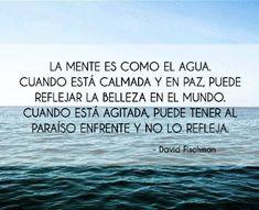 FRASES CÉLEBRES BONITAS: La mente es como el agua. Cuando está calmada y en paz, puede reflejar la belleza en el mundo. Cuando está agitada, puede tener al paraíso enfrente y no lo refleja. ~David Fischman