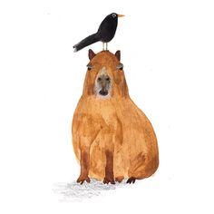 Working on the weekend be like... #weekend #illustration #sketch #capybara…