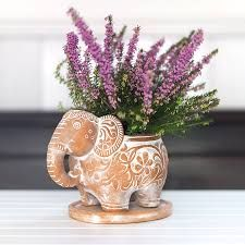 Elephant Plant Pot - Traidcraft - Natural Collection - Plant your vegetables or pretty flowers in this fair trade terracotta planter in the shape of an elephant with a white wash effect. Elephant Plant, White Plants, Clay Vase, Nail Studio, Craft Kits, Pretty Flowers, Potted Plants, Terracotta, Boho