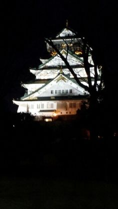 Osaka dez 2014