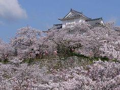 岡山 津山城 Tsuyama castle, Okayama