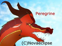 Peregrine drawn and created by me Novaeclipse