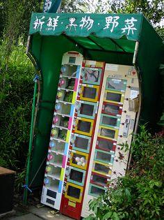 fresh farm vegetables vending machine, Tokyo