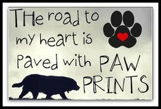 road to my heart paved with paws