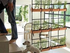 Reciclaje creativo: fotos biombos DIY - Dividir con originalidad