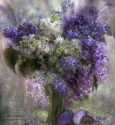 Easter Lilac - Carol Cavalaris