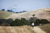 Stanford University's New Trail in Palo Alto Stuff To Do, Things To Do, Stanford University, Bay Area, Trail, Lisa, San Francisco, Country Roads, Things To Make