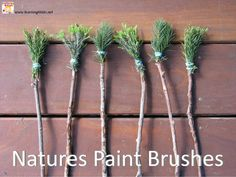 Nature paint brushes this would be fun to do with munchkins!