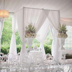 Elegant   Wedding Ceremony   White