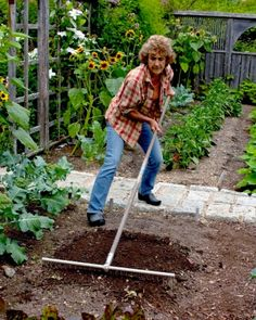 Fabulous Idea for Easy Order! Vegetable Garden Guide: How to Lay Out a Planting Bed - Martha Stewart