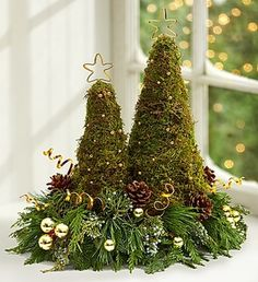 These green miniature Christmas trees are made from moss.