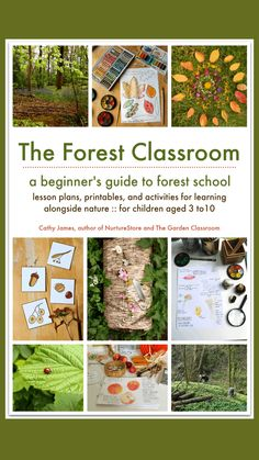 Forest Classroom, Outdoor Classroom, Outdoor School, Forest School Activities, Nature Activities, Outdoor Activities, Outdoor Education, Outdoor Learning, Outdoor Play