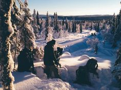 """Flatlight Creative House specializes in film support services in Lapland. For season the company offered services to the US reality show """"The Bachelor. The Bachelor Season 21, Mount Everest, Seasons, Mountains, Film, Travel, Outdoor, Movie, Outdoors"""