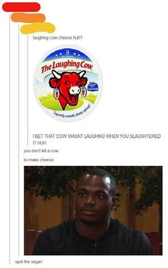 tumblr offended laughing cow