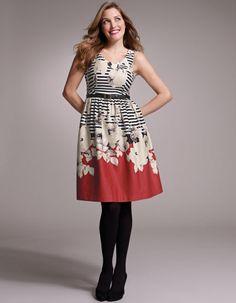 Full Skirt Floral Stripe Dress by Pepperberry