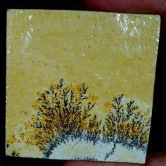 116.55Cts. 100% Natural Designer Psilomelane Dendrite Octagon Cabochon Gemstones #Handmade