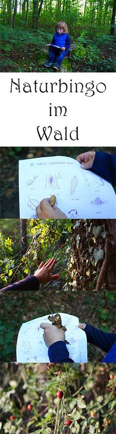 Naturbingo - Spiel im Wald   Forest Scavenger Hunt