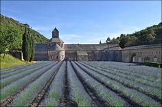 Abbaye de Sénanque - la vue classique :-) by leuntje, via Flickr