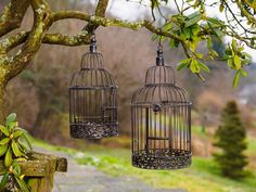 Paar Vogelkäfig Vogel Käfig Deko Antik Stil Metall braun bird cage Dekokäfig 2x | eBay