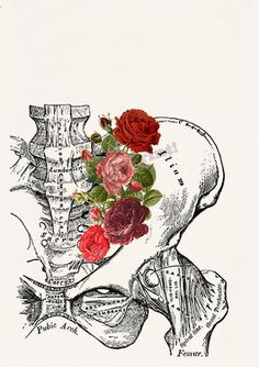 Items similar to Springtime Roses Human Anatomy Pelvis Wall art on Etsy Human Anatomy Art, Anatomy Drawing, Anatomy Study, Pelvis Anatomy, Anatomy Organs, Medical Illustration, Illustration Art, Digital Painting Tutorials, Digital Paintings
