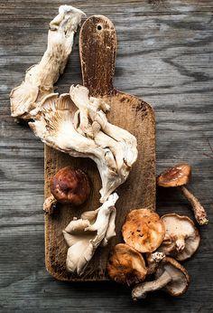 Mushrooms |