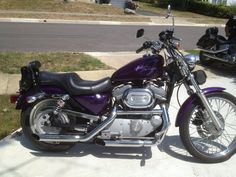 J.S. Brown & Co. office manager, Margie Rife, just got her motorcycle endorsement and a SWEET purple 2003 Harley Davidson Sportster to ride!