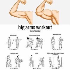"""18.8 mil Me gusta, 271 comentarios - @menwithhealth en Instagram: """"Want bigger arms? Try this! via @factsoftraining #MenWith #menwithhealth"""""""