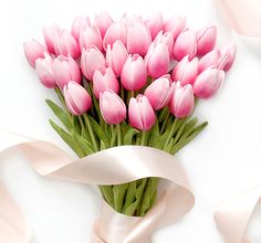 Pink faux ombre tulips // Composition Lane #pinktulips