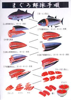Sashimi - Good to know though I don't think I have the stomach to filet a whole fish Japanese Dishes, Japanese Food, Japanese Desserts, Japanese Recipes, Japanese Art, Sushi Tempura, Sushi Sushi, Sushi Art, Mochi