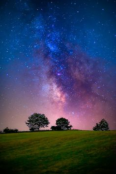 Trees and milky way by Christian Melegari on 500px