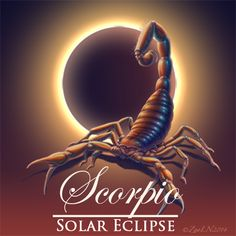 Solar Eclipse, New Moon in Scorpio October 23, 2014