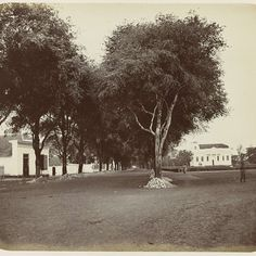 Makassar, Old Portraits, Dutch East Indies, Portrait Photo, Goa, Old Pictures, Art Google, Past, Country Roads