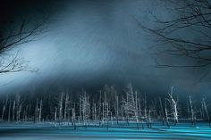 The Blue Pond in Snow,Hokkaido Photo by Kent Shiraishi -- National Geographic Your Shot Christophe Jacrot, Amazing Photography, Nature Photography, Photography Tips, Sense Of Place, National Geographic Photos, Photo Contest, Amazing Nature, Nature Photos