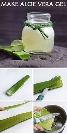 Aloe vera is amazing plant which is also known as the plant of immortality. Aloe vera has been used for many purposes since ancient times. Aloe vera plant is a miracle plant and has many skin and hair benefits. Many beauty products use Aloe vera as a key ingredient. It can treat acne scars and heal acne for a clear skin. Regular use of this homemade aloe vera recipe is very beneficial to keep your skin and hair healthy. When aloe vera is used for hair, they provide nourishment, elimina...