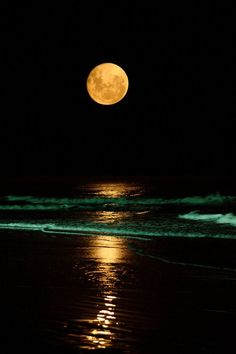 Full Moon Over Ocean At Night | All Things Cool - Charleston Outdoors MagazineCharleston Outdoors ...