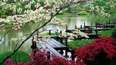 Japanese red garden HD wallpaper