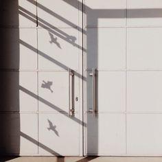 Insta Fav #ignt_symmetry: ellamsinger