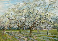 Orchard with Blossoming Plum Trees Vincent van Gogh art for sale at Toperfect gallery. Buy the Orchard with Blossoming Plum Trees Vincent van Gogh oil painting in Factory Price. Vincent Van Gogh, Van Gogh Museum, Art Van, Van Gogh Arte, Van Gogh Pinturas, Franz Marc, Plum Tree, Van Gogh Paintings, Tree Paintings