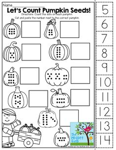 Count the Pumpkin Seeds, cut and paste the number to match!